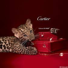 cartier 01192015